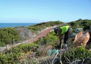 Greenskills Worker Picking Up Rubbish near the ocean